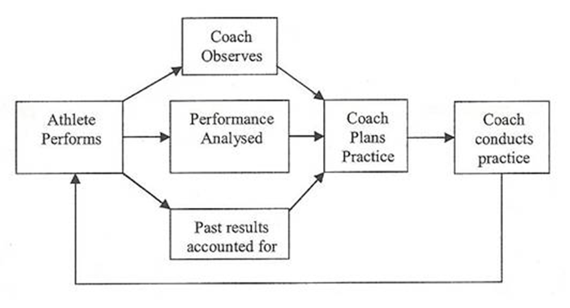 Figure 1: The Coaching Process